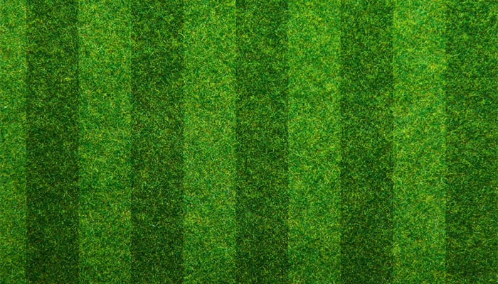 striped turf for soccer field